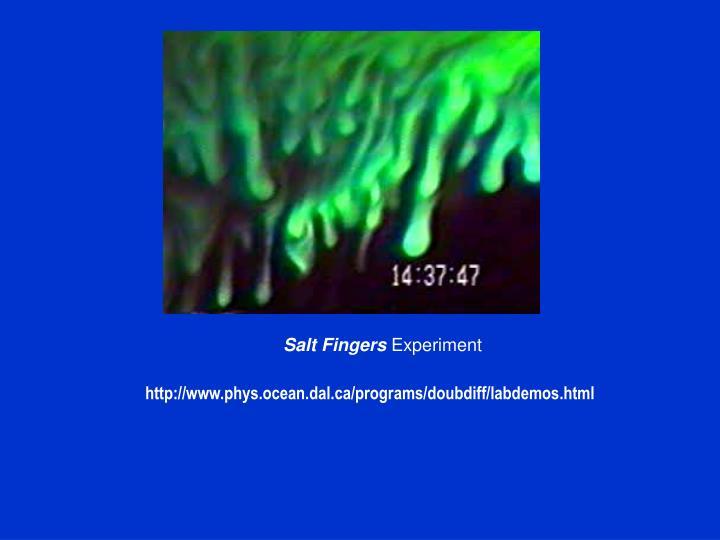Salt Fingers