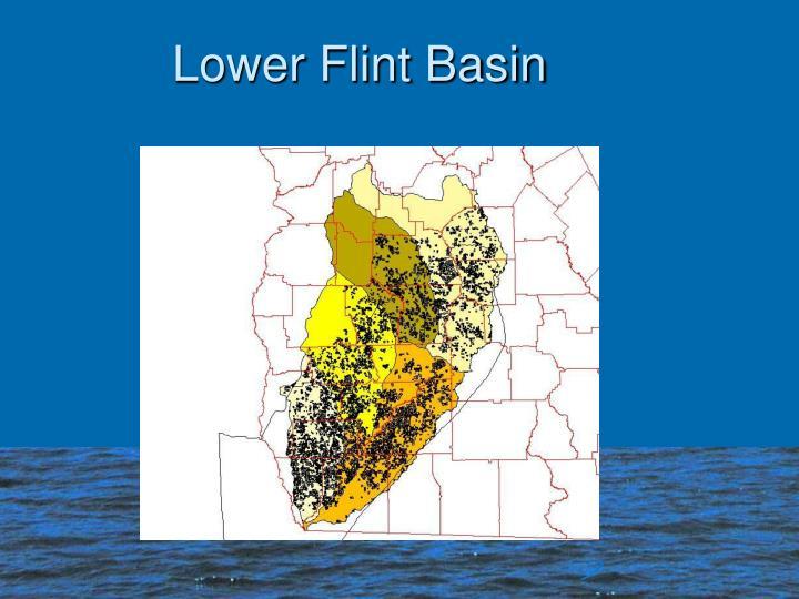 Lower Flint Basin