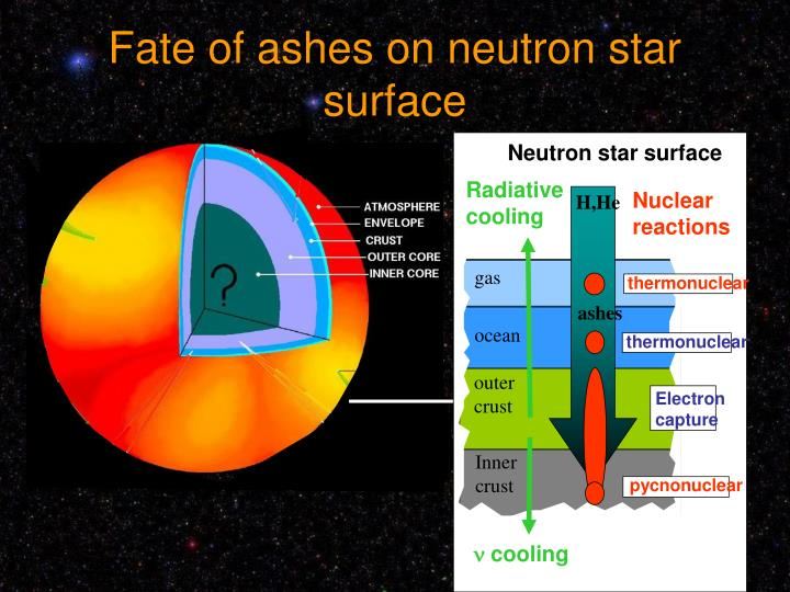 Neutron star surface