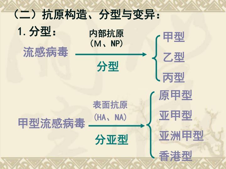 (二)抗原构造、分型与变异: