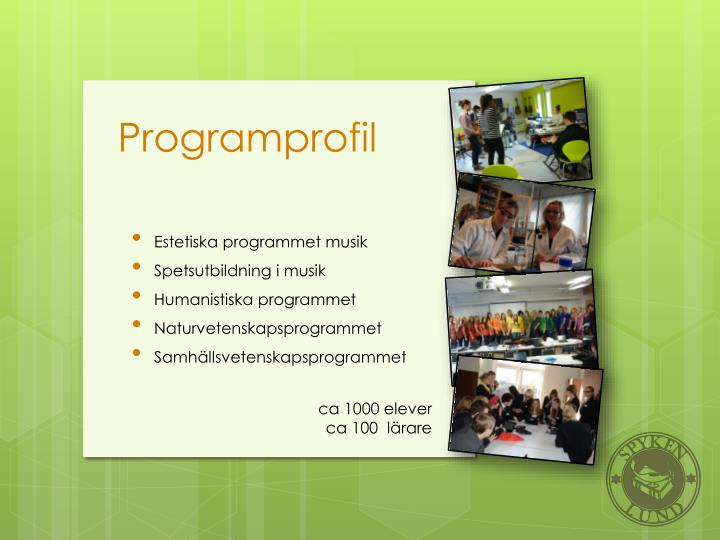 Programprofil