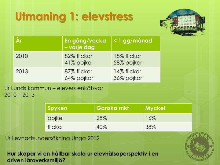 Utmaning 1: elevstress