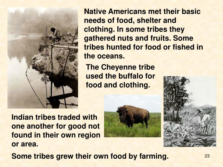 Native Americans met their basic needs of food, shelter and clothing. In some tribes they gathered nuts and fruits. Some tribes hunted for food or fished in the oceans.