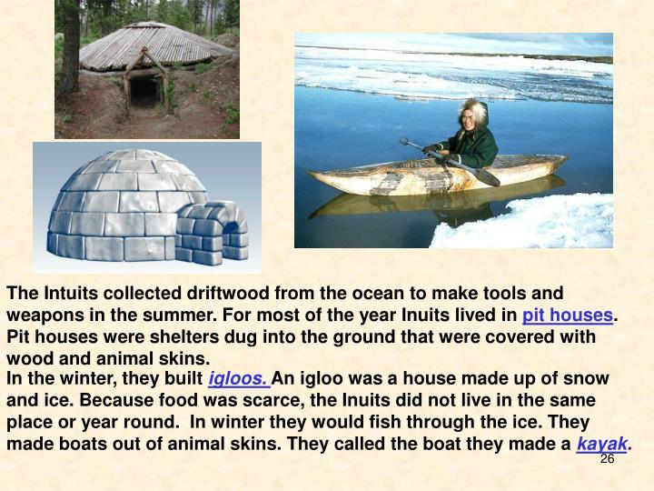 The Intuits collected driftwood from the ocean to make tools and weapons in the summer. For most of the year Inuits lived in