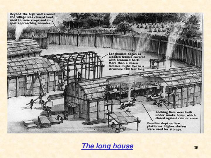 The long house