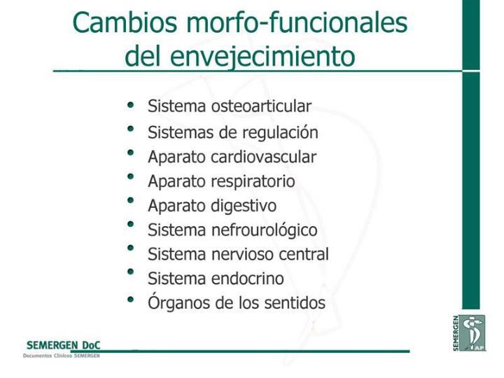 Cambios morfo-funcionales