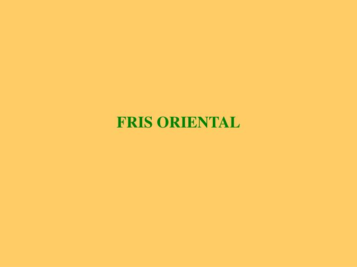 FRIS ORIENTAL