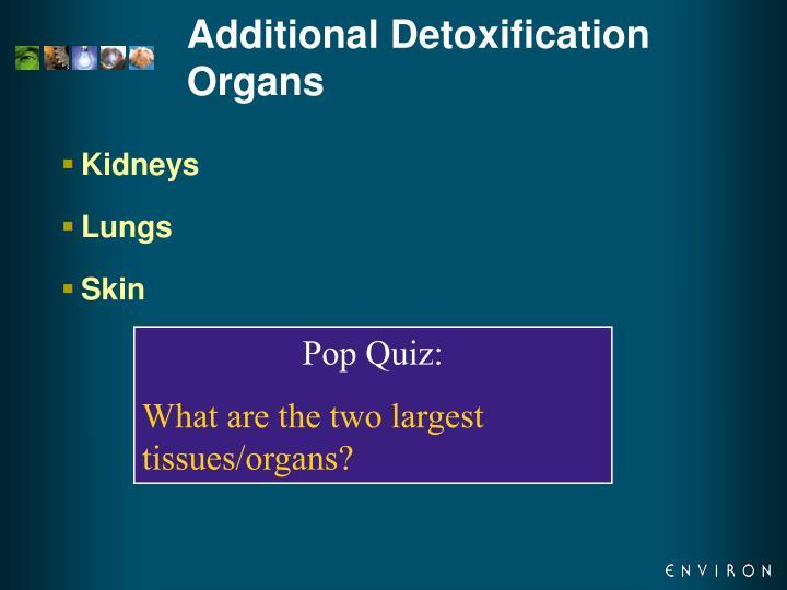 Additional Detoxification Organs