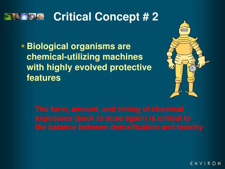 Critical Concept # 2