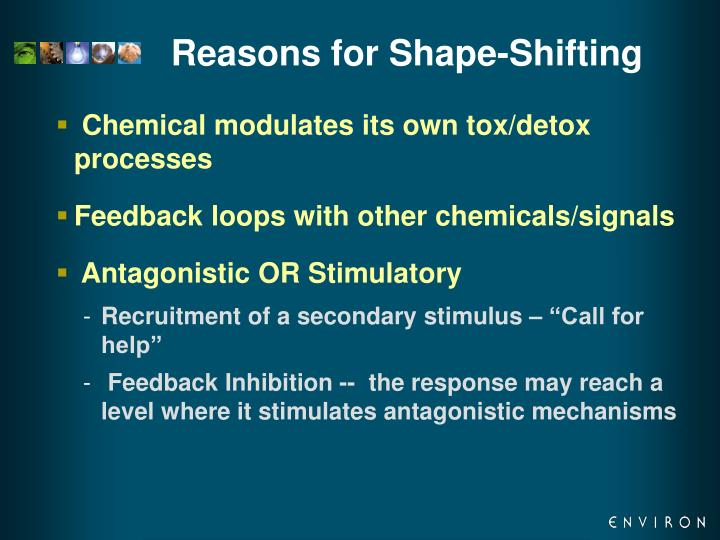 Reasons for Shape-Shifting