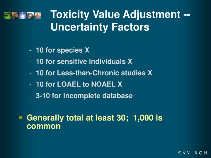 Toxicity Value Adjustment -- Uncertainty Factors