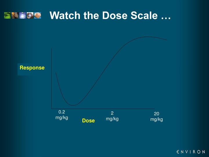 Watch the Dose Scale …