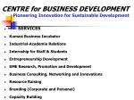 centre for business development pioneering innovation for sustainable development