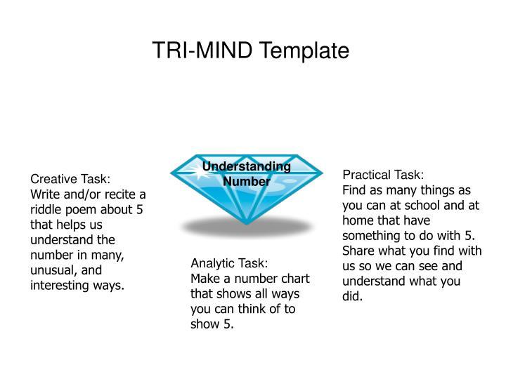 TRI-MIND Template