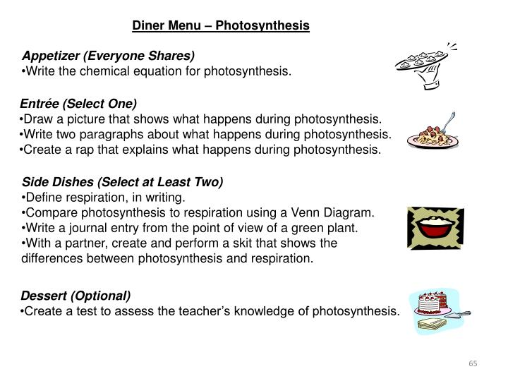 Diner Menu – Photosynthesis