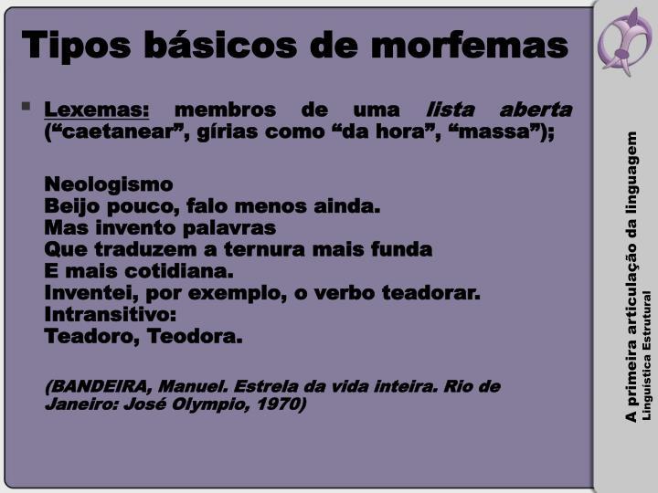 Tipos básicos de morfemas