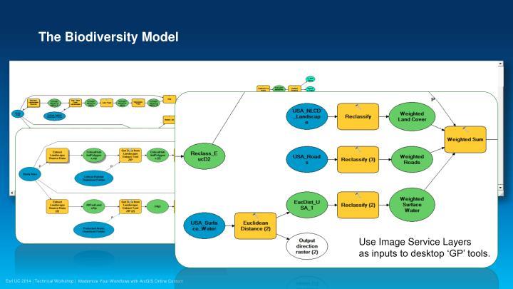 The Biodiversity Model