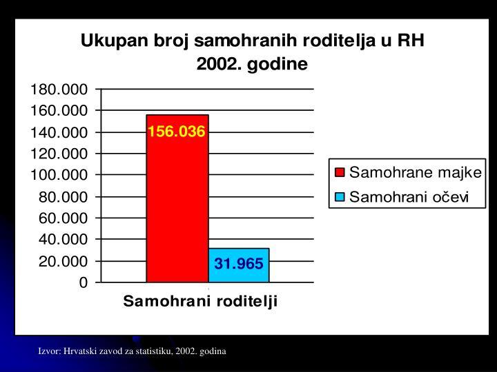 Izvor: Hrvatski zavod za statistiku, 2002. godina