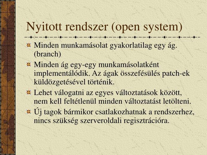 Nyitott rendszer (open system)