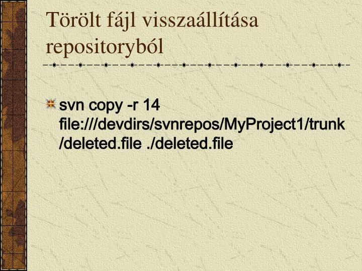 Törölt fájl visszaállítása repositoryból