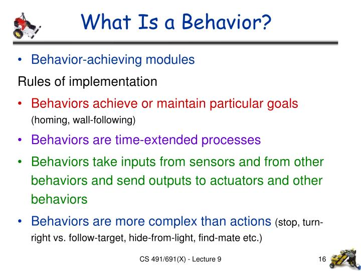 What Is a Behavior?
