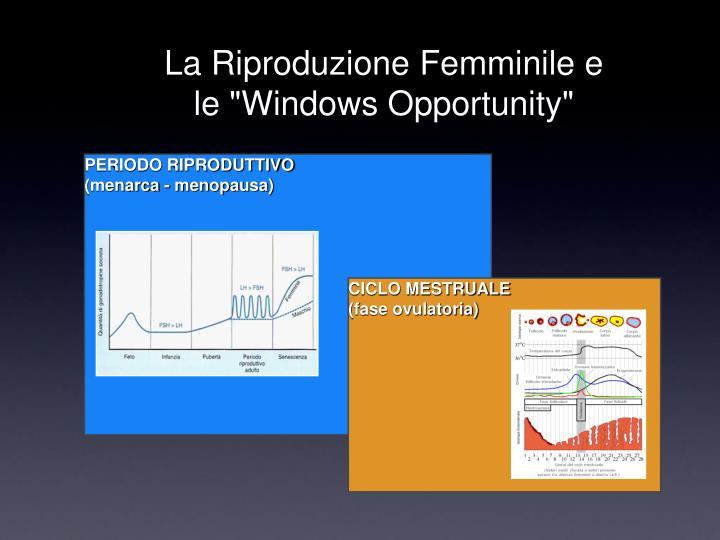 """La Riproduzione Femminile e le """"Windows Opportunity"""""""