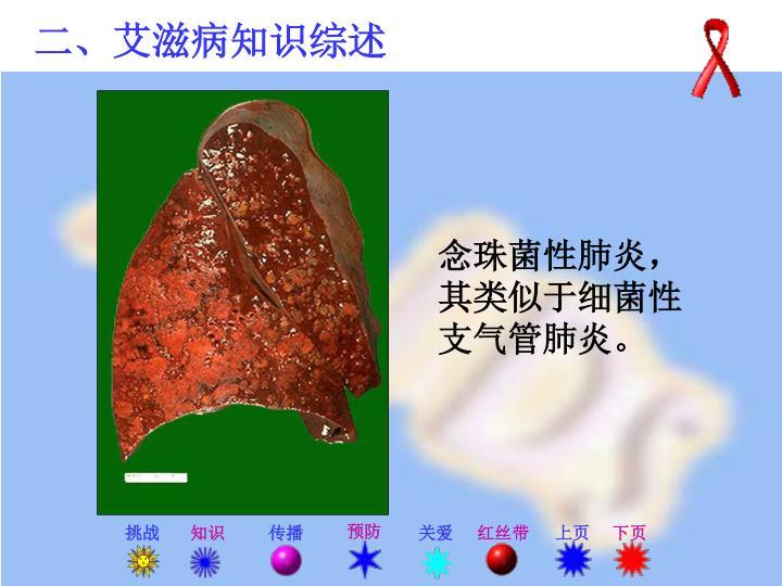 念珠菌性肺炎,其类似于细菌性支气管肺炎。