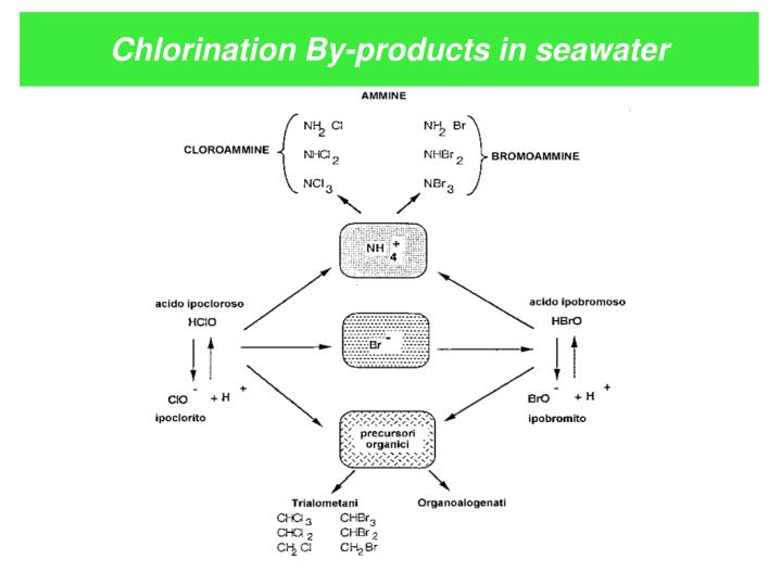 Chlorination By-products in seawater