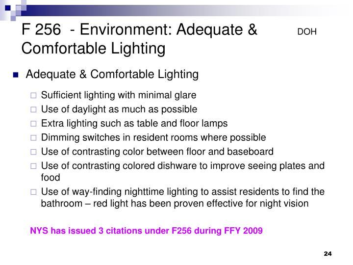 F 256  - Environment: Adequate &