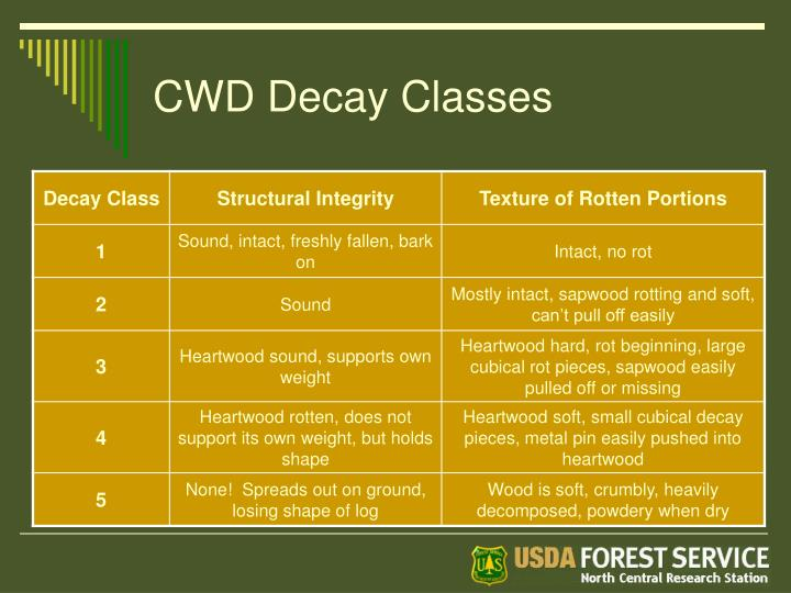 CWD Decay Classes