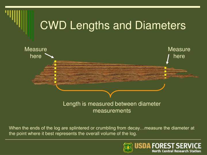 CWD Lengths and Diameters