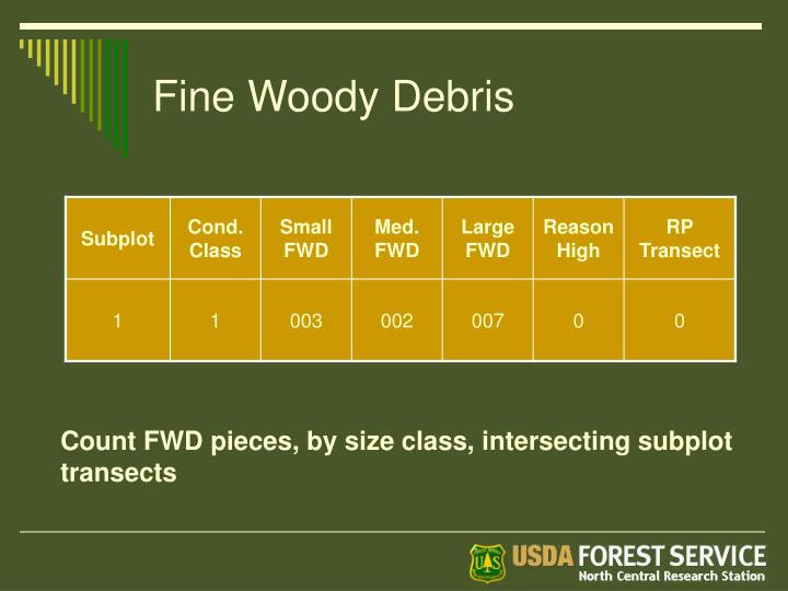 Fine Woody Debris