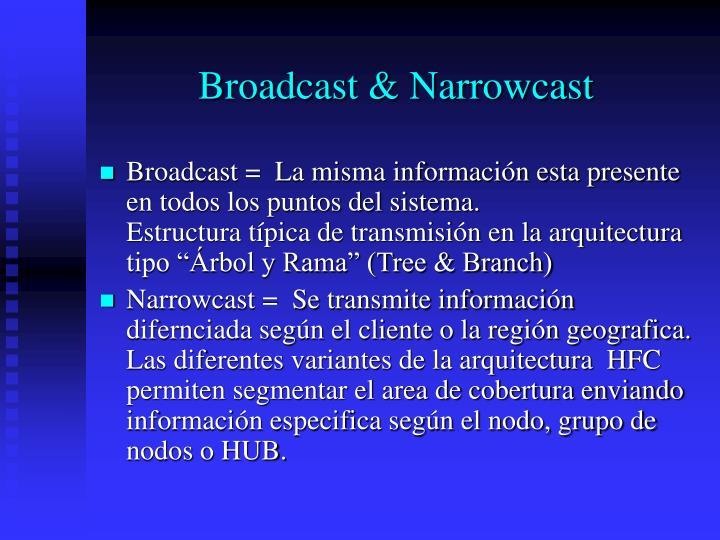 Broadcast & Narrowcast