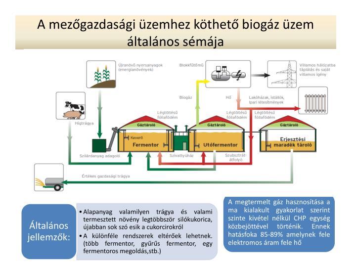 A mezőgazdasági üzemhez köthető biogáz üzem általános sémája