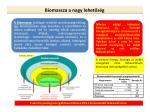 biomassza a nagy lehet s g
