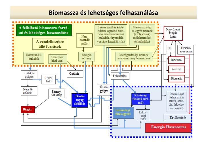 Biomassza és lehetséges felhasználása