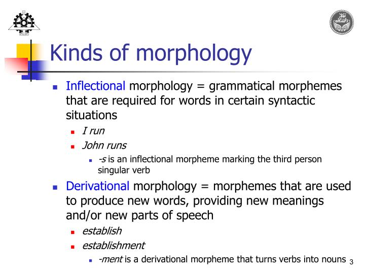 Kinds of morphology