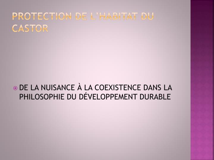 PROTECTION DE L'HABITAT DU CASTOR