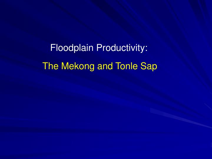 Floodplain Productivity: