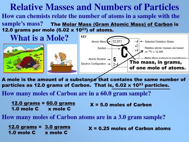 Relative Masses and Numbers of Particles