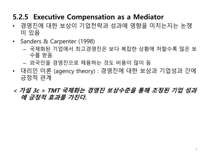 5.2.5  Executive Compensation as a Mediator
