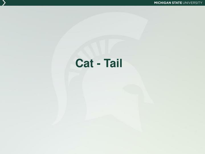 Cat - Tail