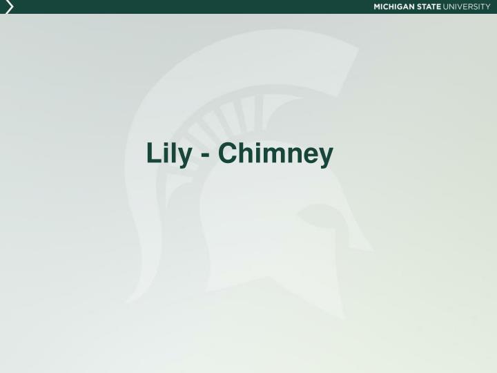 Lily - Chimney
