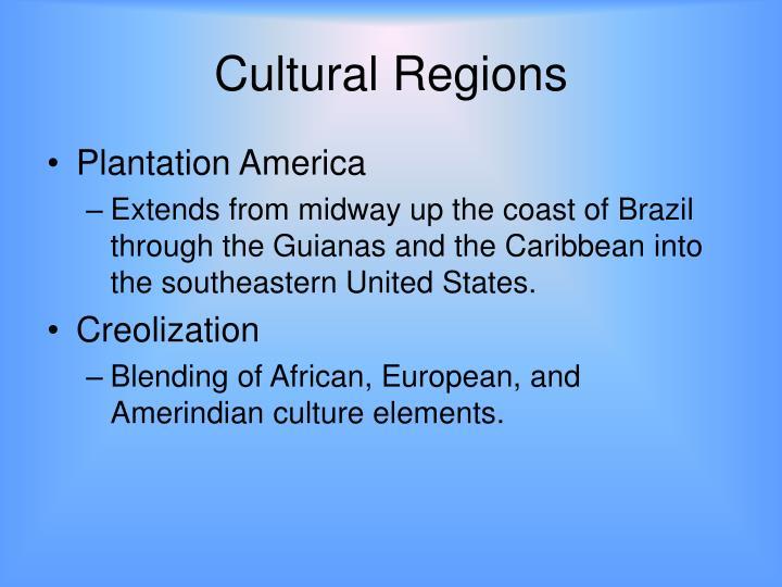 Plantation Society and Creole Society