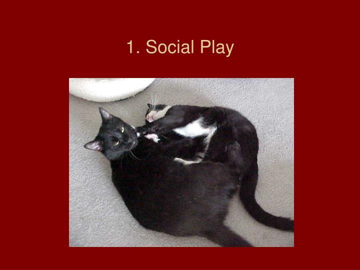 1. Social Play