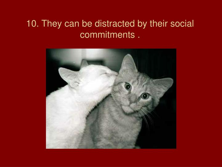 10. They can be distracted by their social commitments .