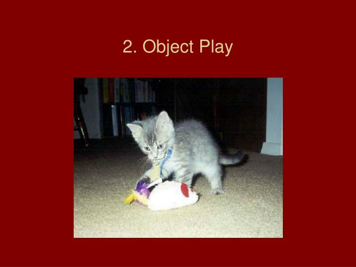 2. Object Play