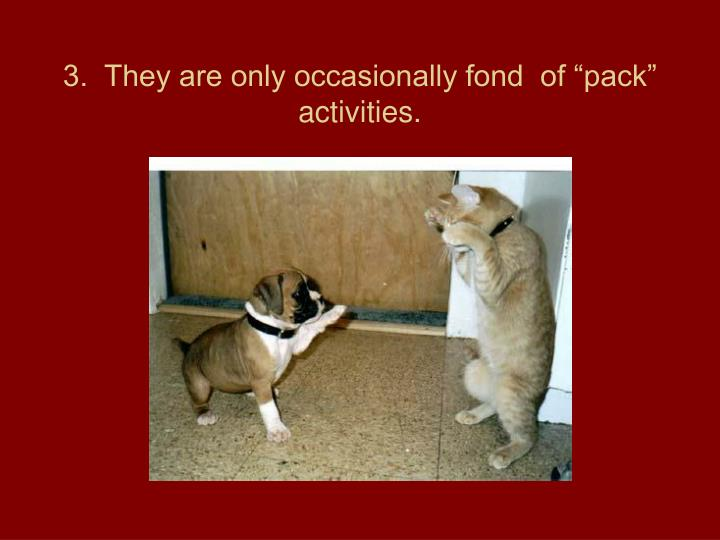 3.  They are only occasionally fond  of pack activities.