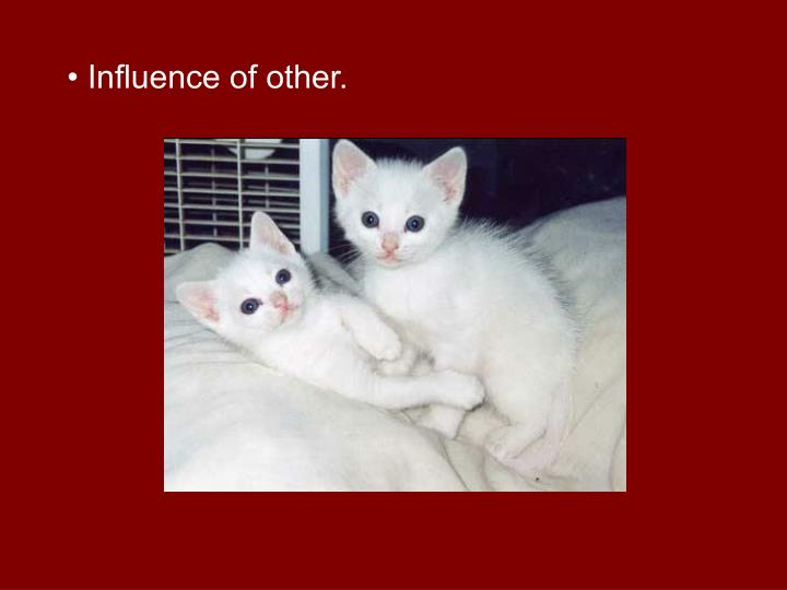 Influence of other.