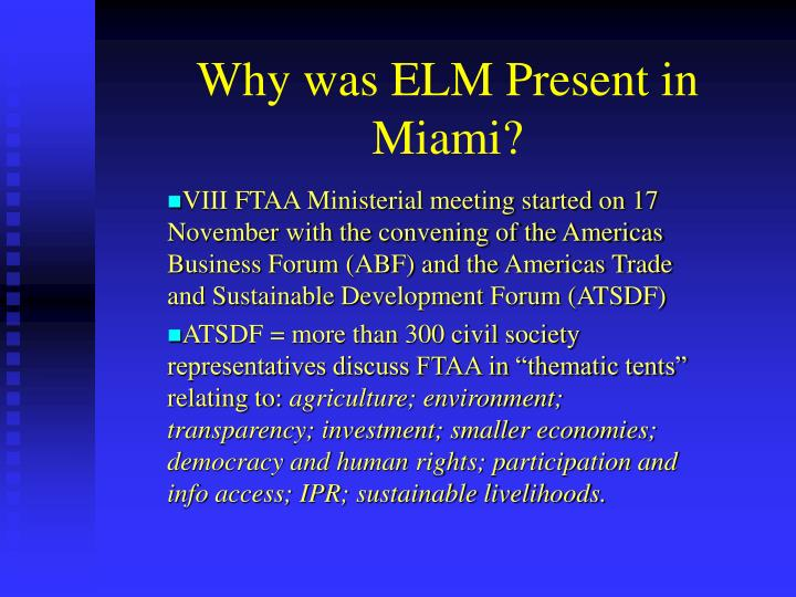Why was elm present in miami